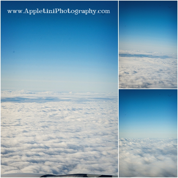 AppletiniPhotography_2429