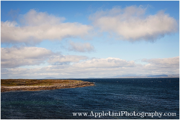 AppletiniPhotography_2529
