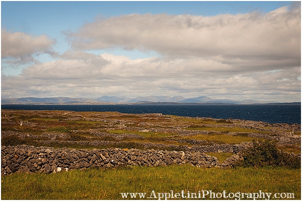 AppletiniPhotography_2531