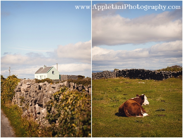 AppletiniPhotography_2533