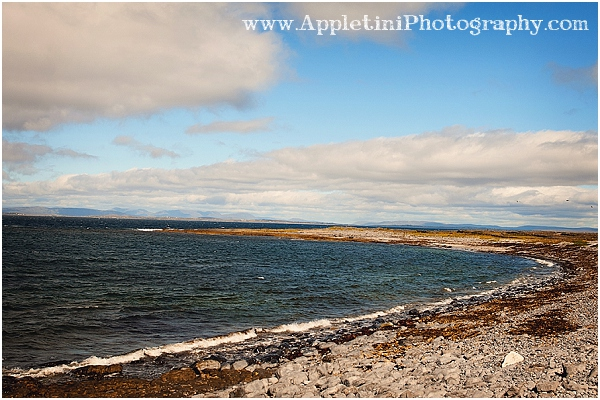 AppletiniPhotography_2535