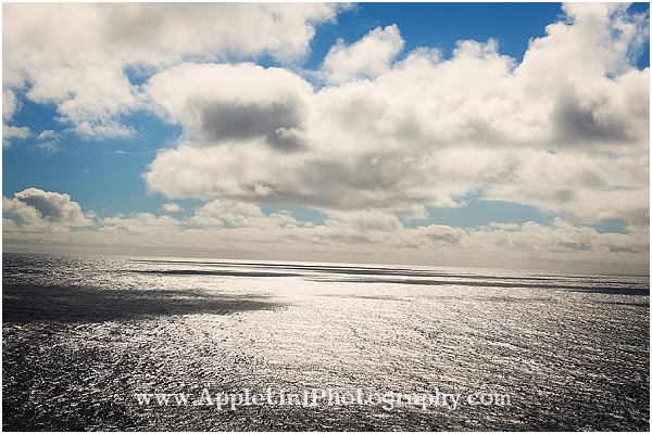 AppletiniPhotography_2541