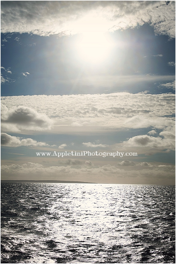 AppletiniPhotography_2550