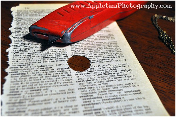 AppletiniPhotography1_0269