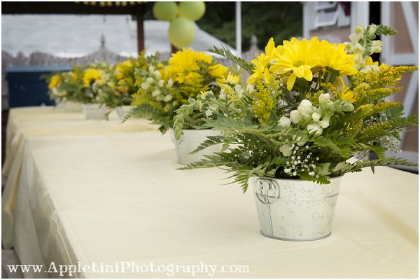 AppletiniPhotography1_0682