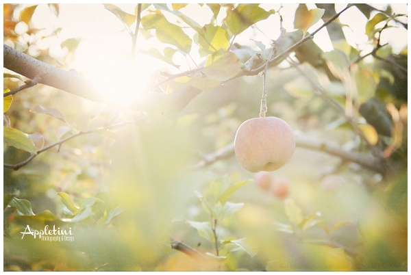 AppletiniPhotography_0753